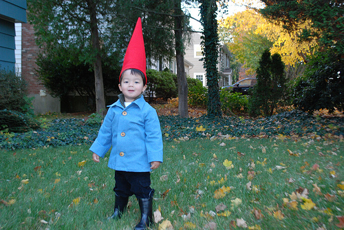roaming gnome costume