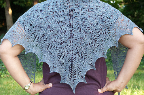 percy shawl